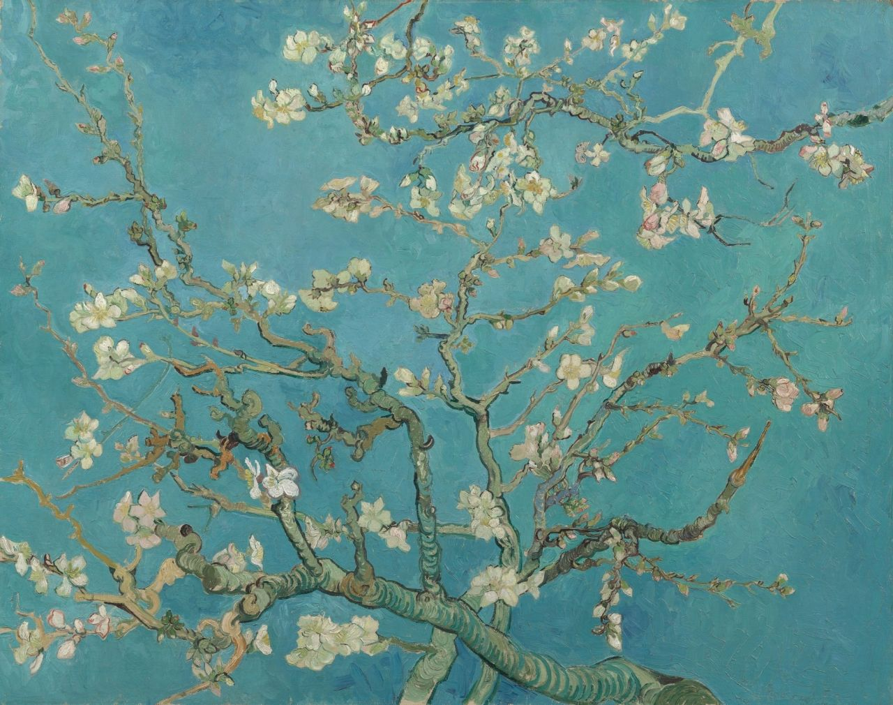 Almond Blossom - Vincent van Gogh - Van Gogh Museum